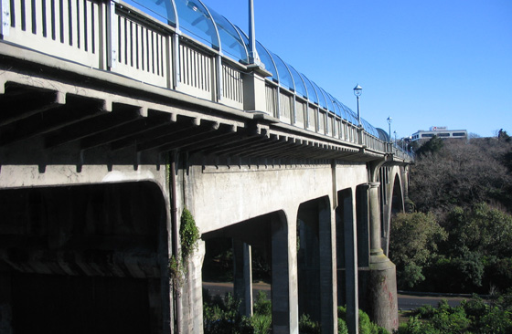 Grafton Bridge FRP
